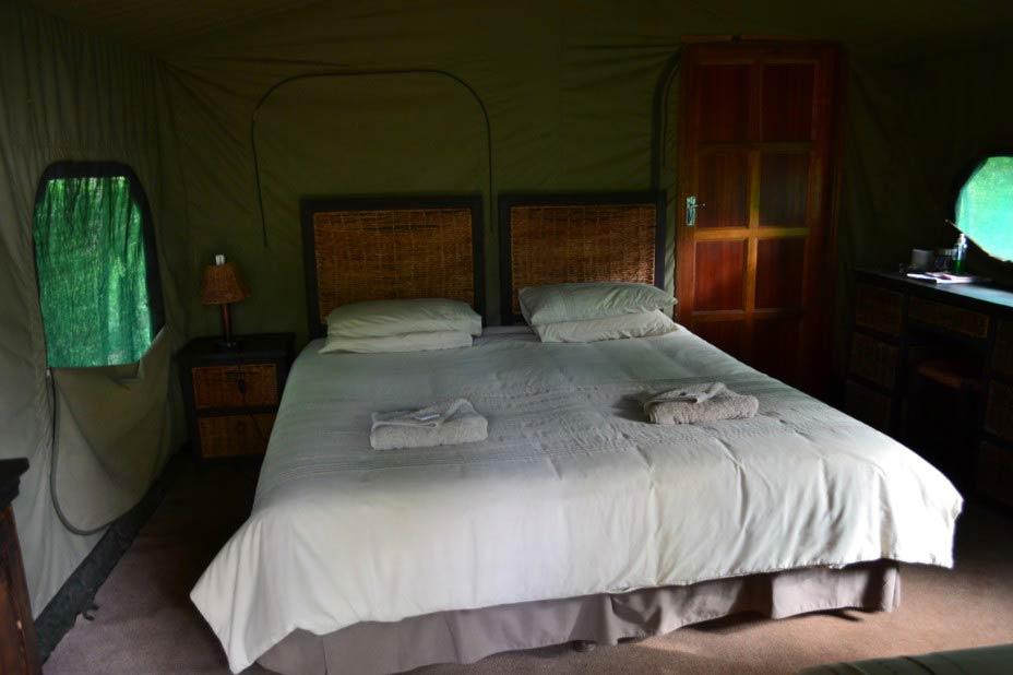Ingwe-Bush-Camp2